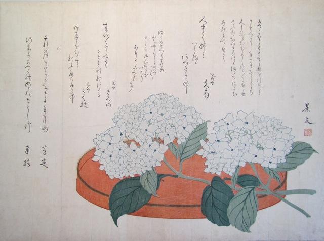 Keibun_surimono_hydrangea