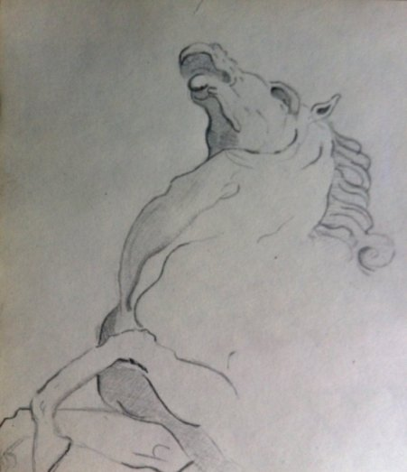Vegder_Wassmer_Romano_horse_drawing_7f
