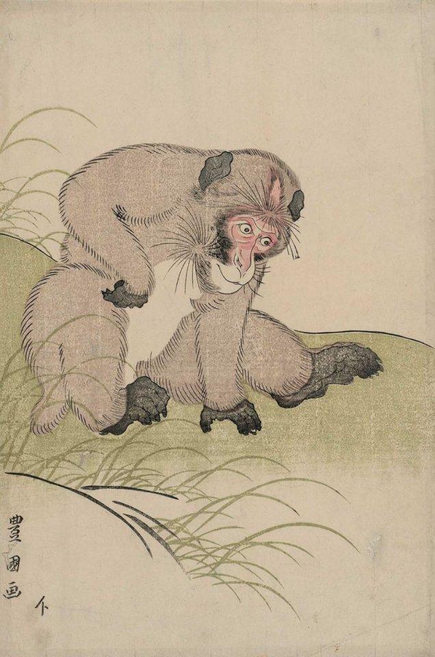 MFA_Toyokuni_I_monkey_7b