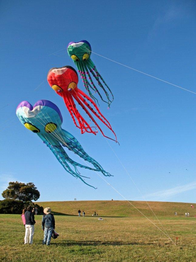 Octopus_kites_Erica_Flickr_7b