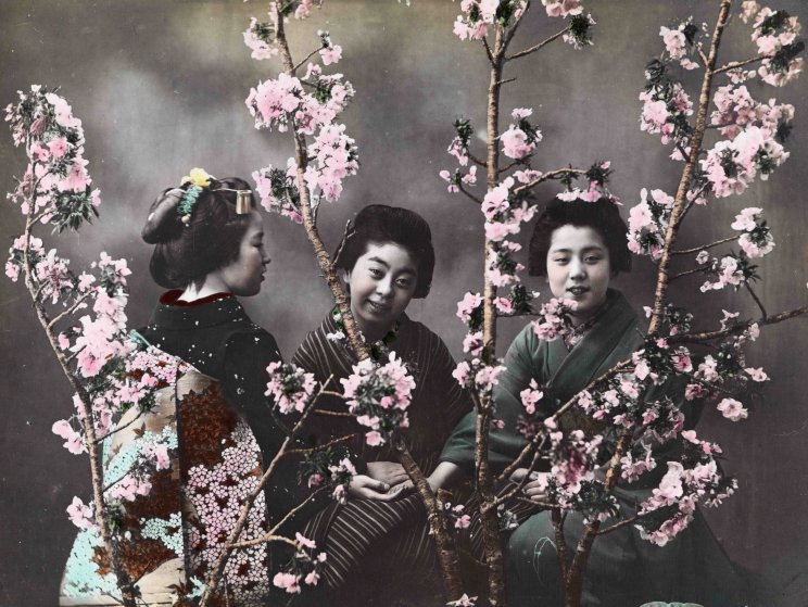 Scidmore_photo_bijin_among_blossoms_hand_colored_7b