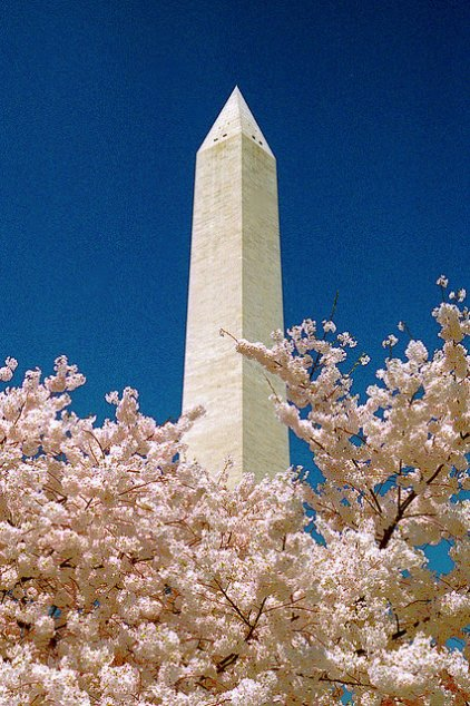 Washington_Monument_Jeff_Kubina_Flickr_7