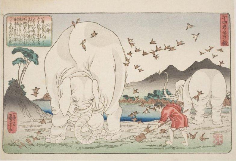 Worcester_Kuniyoshi_Taishun_elephant_7c