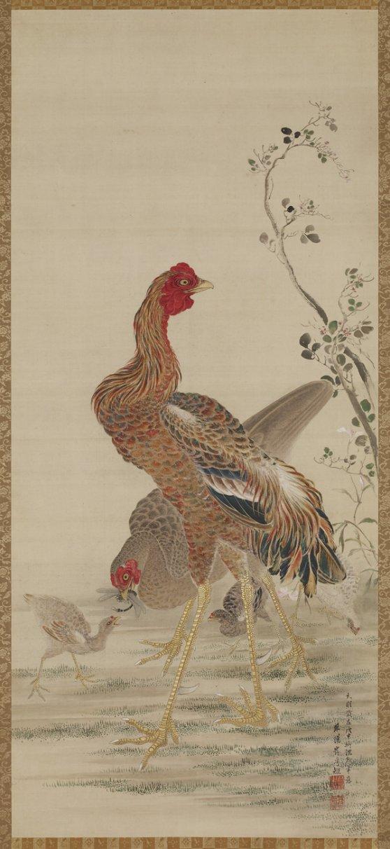 FS_Ganku_rooster_hen_chicks_tombo_7c
