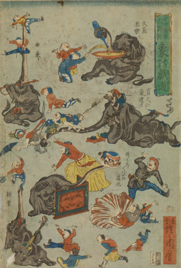 Waseda_Indian_elephants_playing_7b