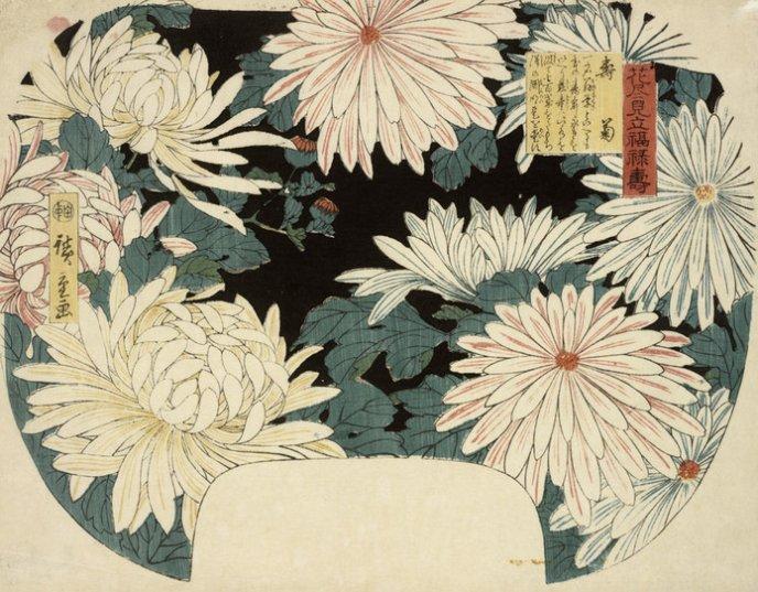 RISD_Hiroshige_fan_chrysanthemums_7